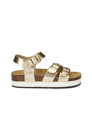 Vicco Spor Sandalet Altın